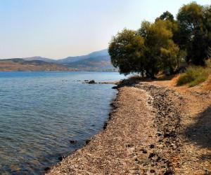 Quando ir a Lesbos: melhor época para visitar