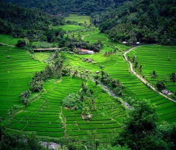 Bali em junho